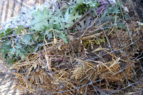 Compost7