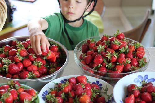 Strawberries10